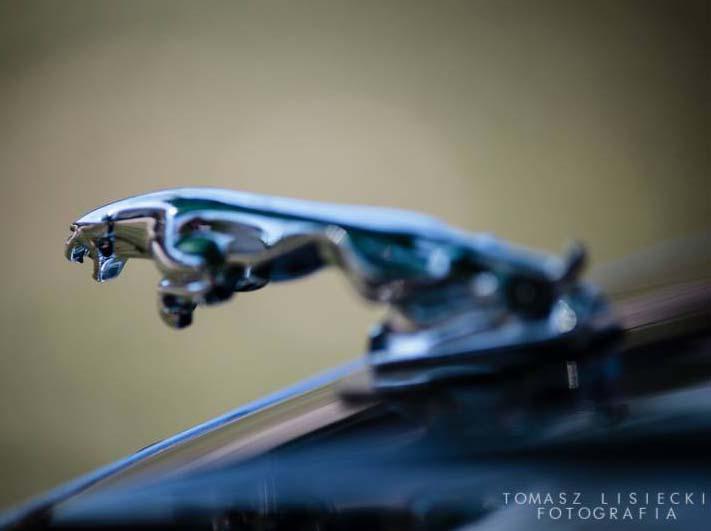 Czyszczenie skóry w Jaguarze Daimler XJ40 na MotoClassic